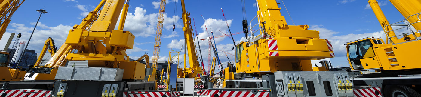 Fleet of Construction Cranes